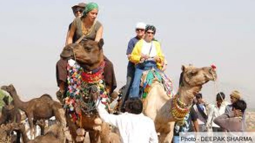 Pushkar Fair India